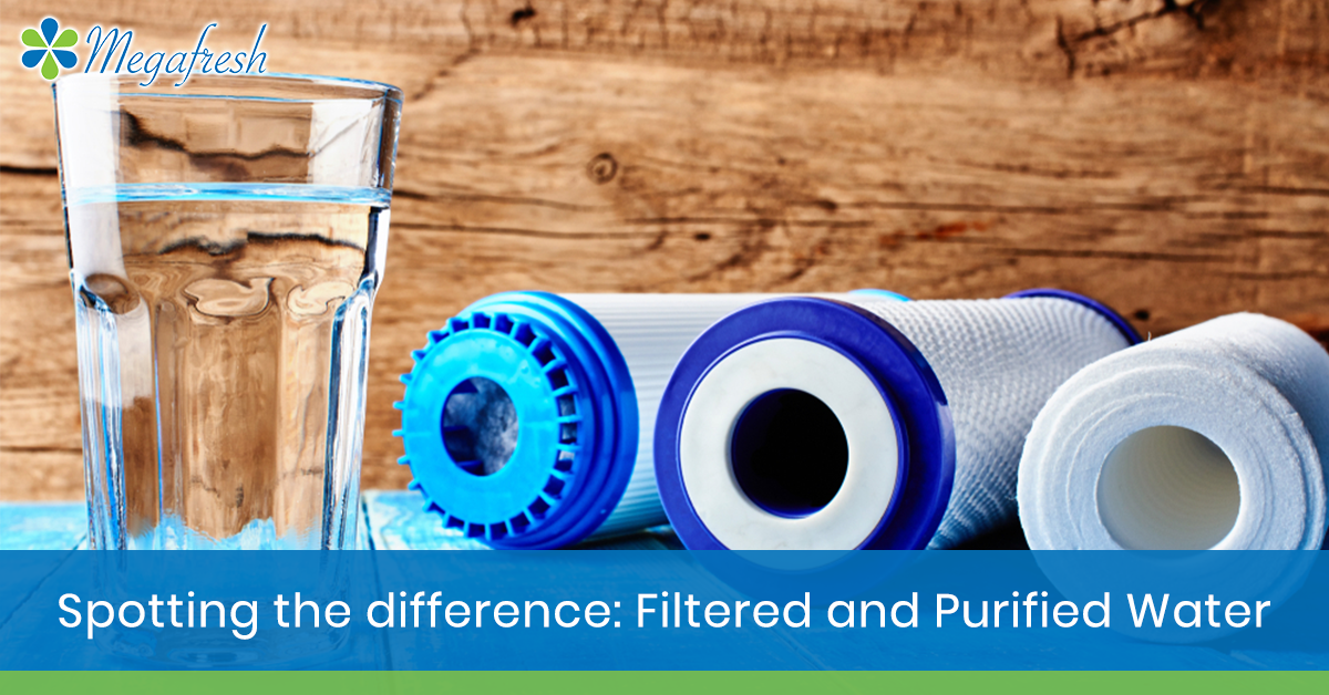 filtered and purified water