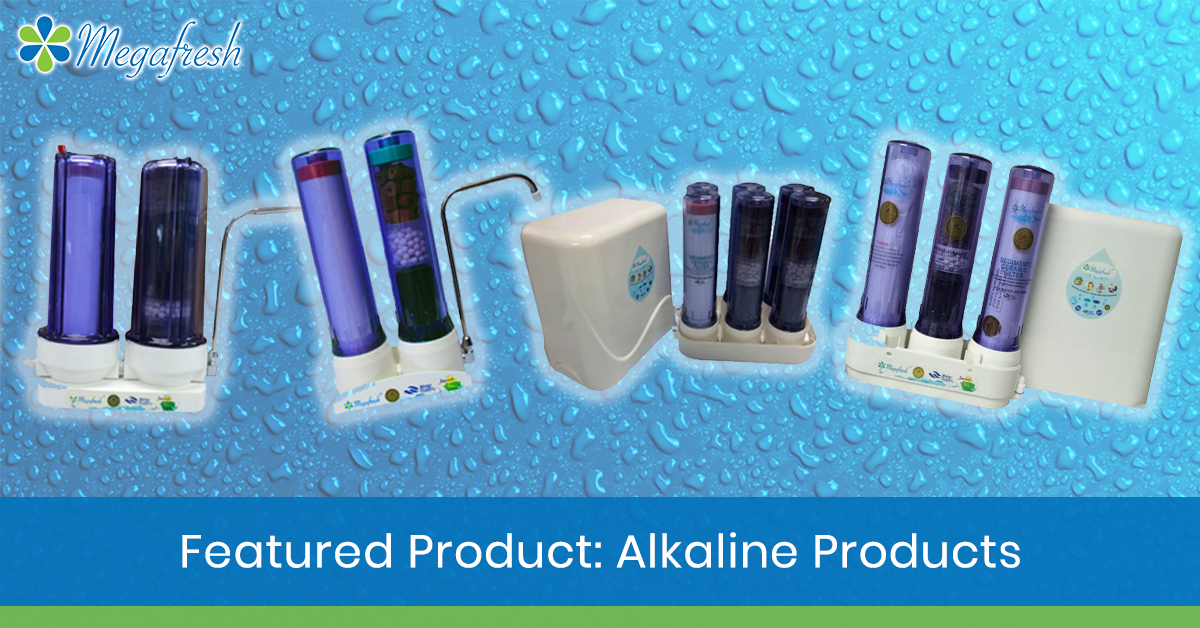 alkaline products