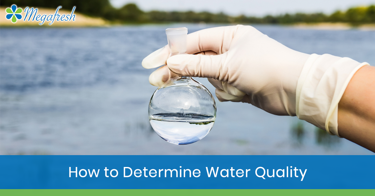 determine water quality